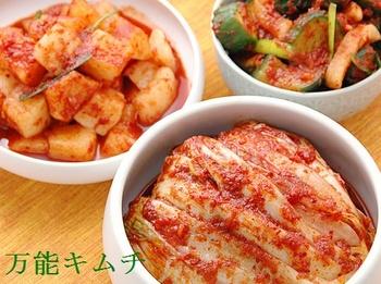 最高に栄養価が高い韓国キムチ.jpg